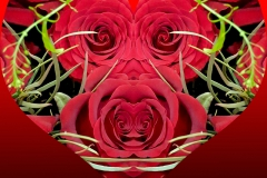 Rosen-Herz