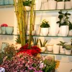 Tisch links mit frischen Blumen