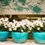 Ronkenstein-Keramiken mit Blumen