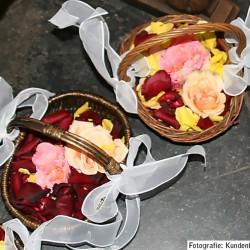 Für Blumenkinder: verschieden farbige Rosenblätter